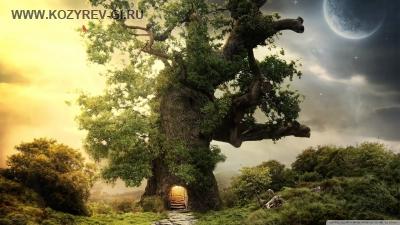 Как гномик Ведя и его друзья спасали дуб. Сказка